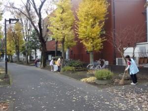 落ち葉掃き中